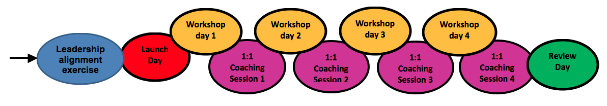 Group leadership development programme format